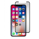 Gadget Guard Black Ice Cornice Curved Edition Tempered Glass Screen Guard for Apple iPhone X (Clear)