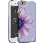 Cellairis Aero Case for Apple iPhone 6/6S - Flowers Daisy Purple